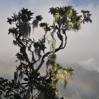 Matières -La Réunion du 15 au 21 juin 026